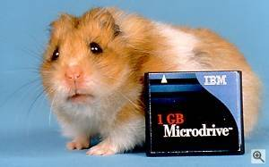 IBM's 1GB Microdrive. Courtesy of IBM - click for a bigger picture!