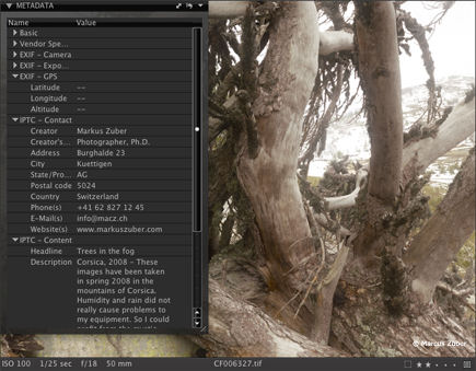 Editing metadata in Capture One 5.1 PRO. Screenshot provided by Phase One A/S.