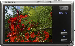 Sony's Cyber-shot DSC-T50 digital camera. Courtesy of Sony, with modifications by Michael R. Tomkins. Click for a bigger picture!
