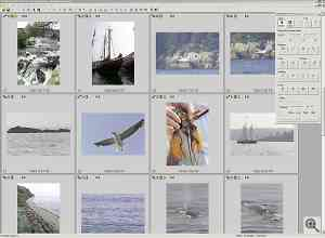 Kodak's DCS PhotoDesk software, browsing images. Click  for a bigger picture!