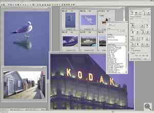 Kodak's DCS PhotoDesk software, image review. Click  for a bigger picture!