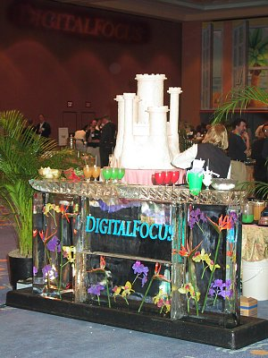 Digital Focus 2001 - the incredible ice sculpture / bar at the entrance to the event. Copyright (c) 2001, Michael R. Tomkins. All rights reserved.