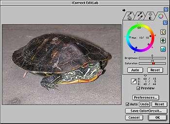 Turtle EditLab