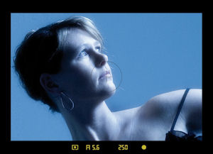 The view through the Leica S2's viewfinder. Courtesy of Leica, with modifications by Michael R. Tomkins. Click for a bigger picture!