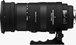 The SIGMA APO 50-500mm F4.5-6.3 DG OS HSM lens. Photo provided by Sigma Corp.