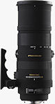 Sigma's APO 150-500mm F5-6.3 DG OS HSM lens. Courtesy of Sigma, with modifications by Michael R. Tomkins.