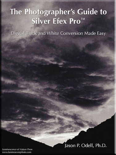 The cover of Jason P. Odell's e-book, 'The Photographer's Guide to Silver Efex Pro: Digital Black and White Conversion Made Easy'. Screenshot provided by Luminescence of Nature Press. Click for a bigger picture!
