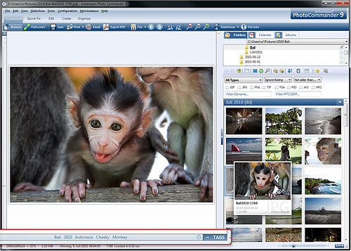 Browsing images in Photo Commander 9. Screenshot provided by Ashampoo GmbH & Co. KG. Click for a bigger picture!
