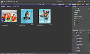 Adobe Photoshop Elements 8 for Windows. Screenshot provided by Adobe Systems Inc. Click for a bigger picture!