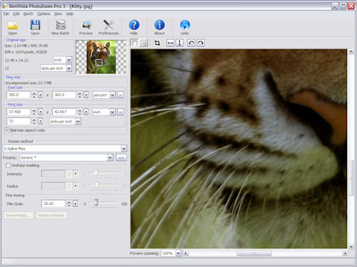 BenVista's PhotoZoom Pro 3 on the Windows platform. Screenshot provided by BenVista.