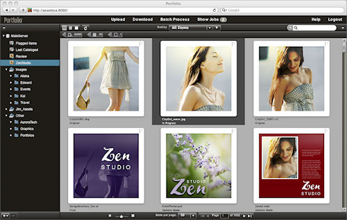 Extensis Portfolio Studio -- browsing a variety of image formats. Screenshot provided by Celartem Technology, Inc. Click for a bigger picture!