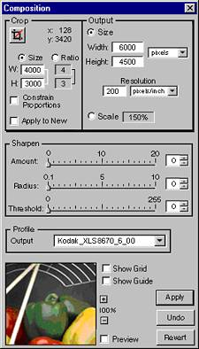 Kodak's DCS Capture Studio Version 1.5, 'Composition' dialog. Courtesy of Kodak.