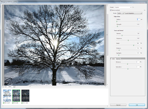 Photoshop CS5's Merge to HDR Pro dialog. Screenshot provided by Adobe Systems Inc. Click for a bigger picture!