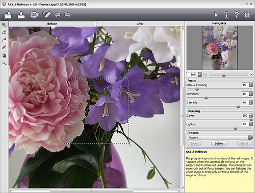 Akvis Refocus v1.0: Sharpening an image with the 'Flowers' preset. Screenshot provided by AKVIS. Click for a bigger picture!