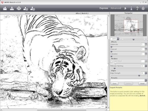 Reviewing a pencil sketch effect in AKVIS Sketch v11. Screenshot provided by AKVIS. Click for a bigger picture!