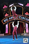 Click to see Ycircus_toss02-8000.JPG
