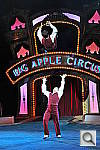 Click to see Ycircus_toss03-8000.JPG