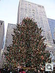 Click to see ychristmastree.jpg