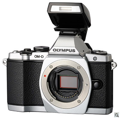 pro review: is the olympus om d the perfect digital camera?