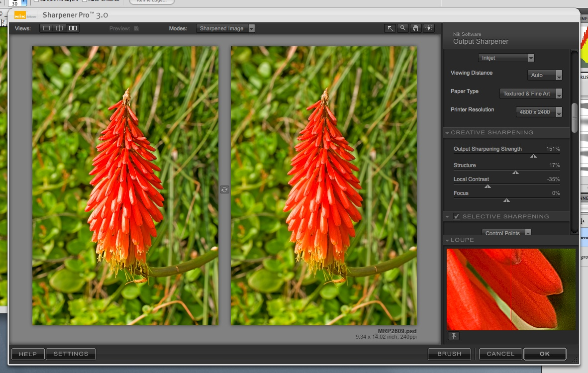 how to add nik plug ins to photoshop
