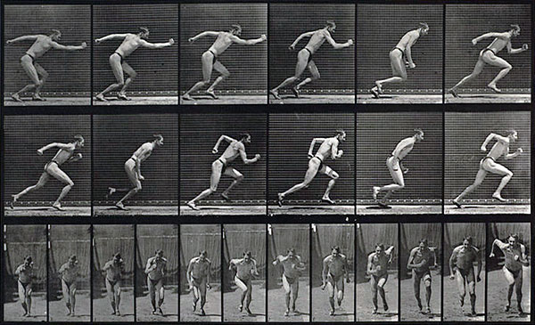 Image result for eadweard muybridge