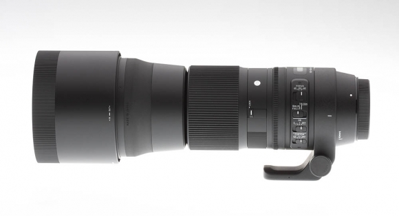 Sigma 150 600mm Contemporary Lens Review The Best Bang