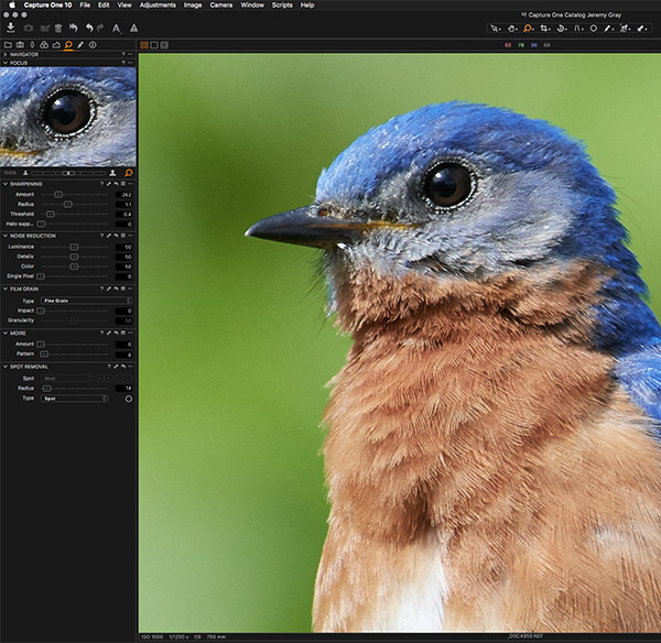 Phase One Capture One Pro 10 Review: A very powerful RAW