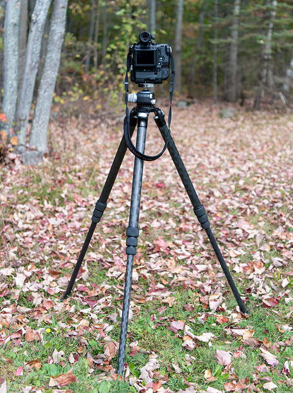 really right stuff tvc 34l tripod review is this premium carbon