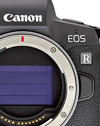 IR exclusive  Where s Canon going with the EOS R  Do they have a plan  d34f95a781a1a
