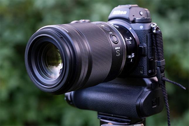 Nikon Z MC 105mm f/2.8 VR S Nikkor Field Test: Does Nikon's new 105mm macro lens deliver?