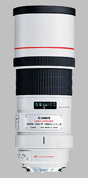 image of the Canon EF 300mm f/4L IS USM lens