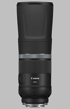 image of the Canon RF 800mm f/11 IS STM lens