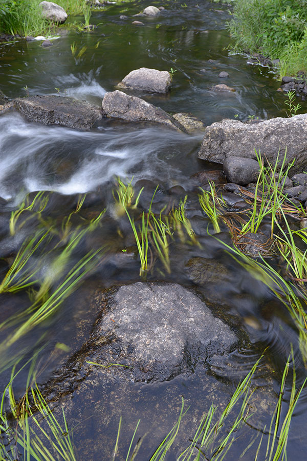 Nikon 28mm f/1.4E ED AF-S Review: Field Test -- Gallery Image