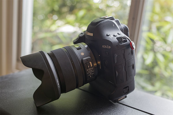 Sigma 24-70mm f/2.8 Art Field Test -- Gallery Image