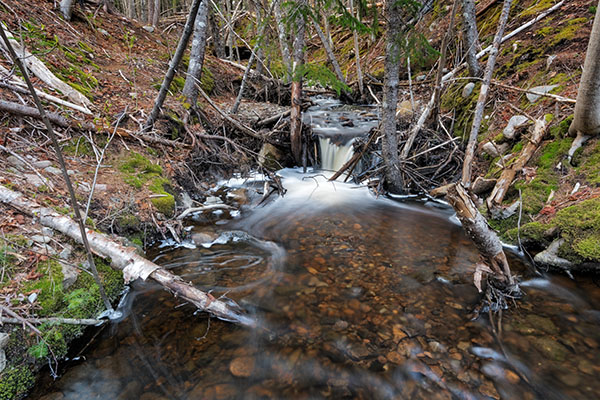 Tamron 10-24mm f/3.5-4.5 Di II VC HLD Review: Field Test -- Gallery Image