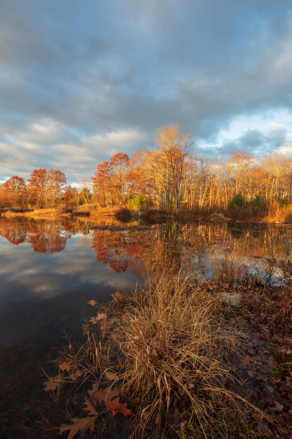 Tamron 15-30mm f/2.8 Di VC USD G2 Review: Field Test -- Gallery Image
